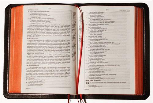 ESVP Bibles 002