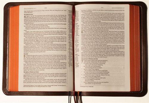ESVP Bibles 001