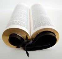 Bible Design Blog: Nelson Signature Slimline KJV